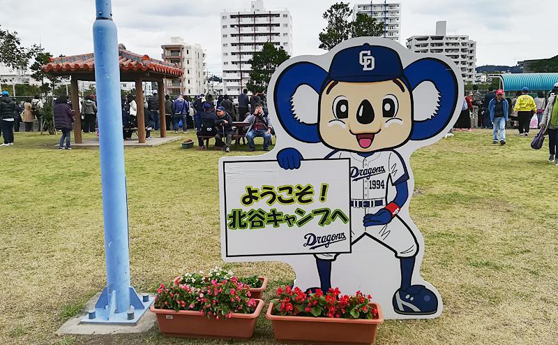 沖縄 観光 穴場 野球 春季キャンプ