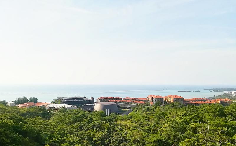 沖縄 観光 穴場 OIST